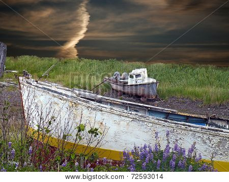 old wooden boat in wildflowers