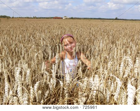 In Wheat Field