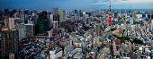 pic of kanto  - Tokyo city view visible on the horizon - JPG