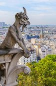 foto of gargoyles  - Gargoyle in the cathedral of Notre Dame Paris France - JPG
