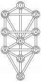 image of hebrew  - Tree of Life with the ten Sephirot of the Hebrew Kabbalah - JPG