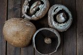 pic of portobello mushroom  - Healthy delicious autums vegetables fresh portobello mushrooms