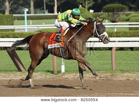 Devil May Care Wins The Coaching Club American Oaks
