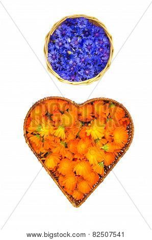 Marigold Calendula And Cornflower Medical Flowers In Baskets