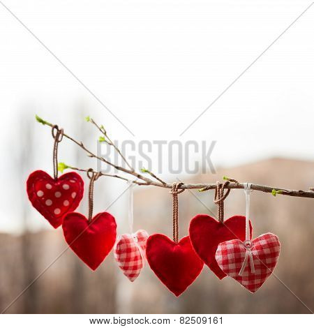 Valentine day love beautiful. Heart hanging on branch of tree