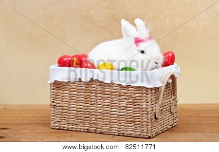 Cute easter bunny sitting in basket with colorful eggs - on golden background