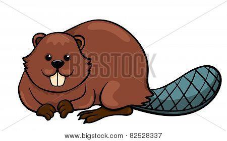 Beaver Isolated On White