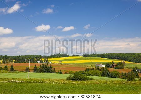 Summer landscape of farms and fields with red soil, Prince Edward Island, Canada.