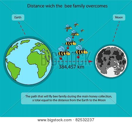 Way Which Is Overcome By A Family Of Bees During The Main Honey Collecting