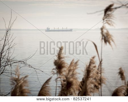 The silhouette of a cargo ship on the Chesapeake Bay with sea oats growing along the shore in the foreground.
