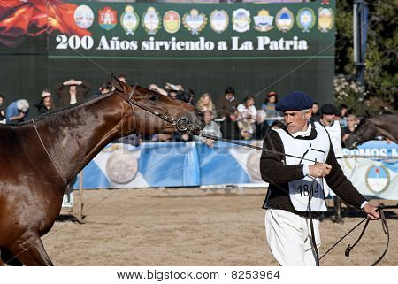 124 º Exposition Livestock And Rural Argentina