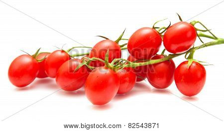 Plum Tomatoes On The Vine