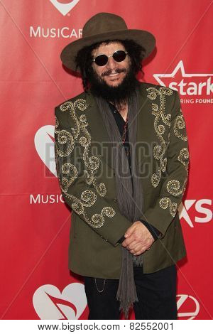 LOS ANGELES - FEB 6:  Don Was at the MusiCares 2015 Person Of The Year Gala at a Los Angeles Convention Center on February 6, 2015 in Los Angeles, CA