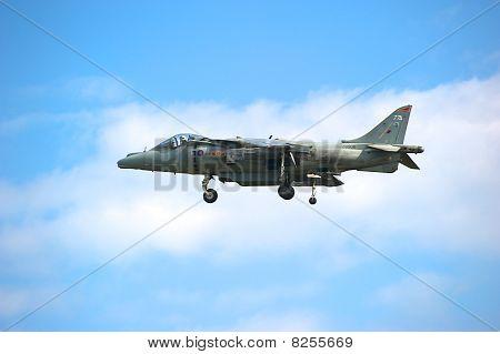 Harrier at Air Show