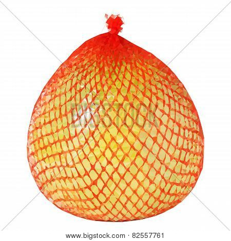 Vector low poly yellow pomelo wrapped