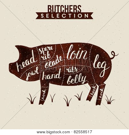 Butchers selection illustration