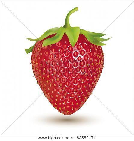 Strawberry isolated on white. Vector eps 10.