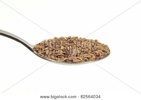 Dill Seeds On A Teaspoon