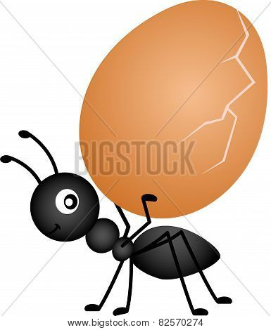 Ant Carrying a Egg