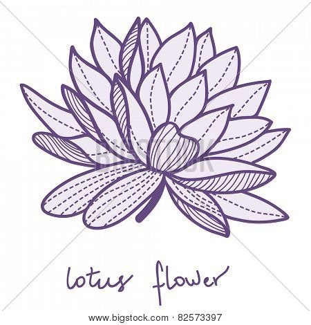 Stylish lotus flower on white background