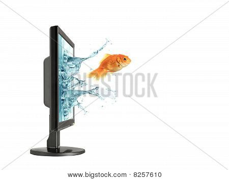 Jumping Out Lcd