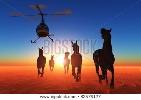 Group of horses and a helicopter in the desert.