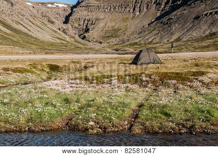 Wild camping under the mighty fjords in the Iceland
