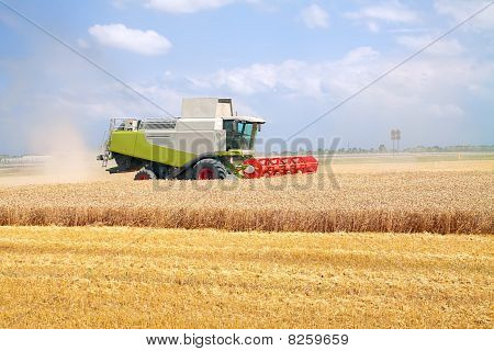 Combine For Harvesting Wheat