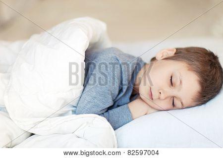 Portrait of cute sleeping boy