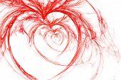 wild hearts on white