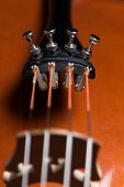 foto of cello  - detail close up image of a classical instrument cello - JPG