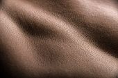 pic of bodyscape  - Skin hills of female body looking like landscape image - JPG