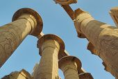 image of hieroglyph  - Top of columns in Karnak temple with ancient egypt hieroglyphics  - JPG