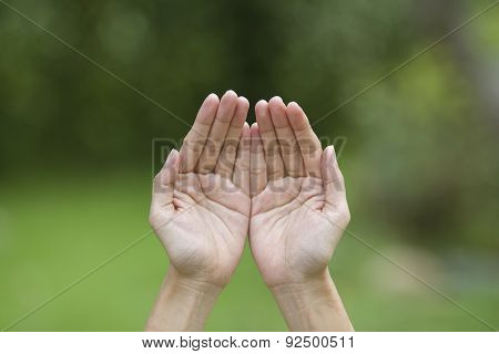 Empty Human Hands With Palms Up