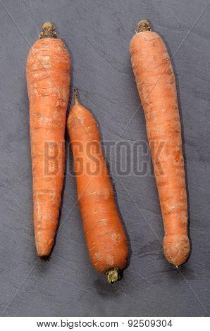 Fresh Organic Carrot On Slate
