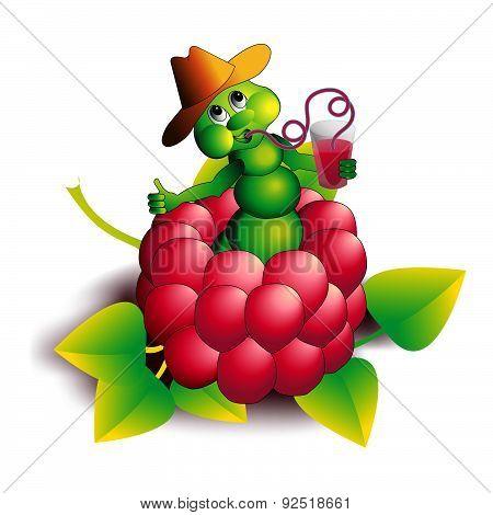Caterpillar In Raspberry.