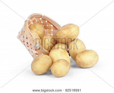 Fresh New Potatoes Picked In Rustic Basket Isolated On White Background