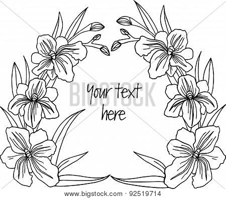 Hand drawn decorative iris frame for the text