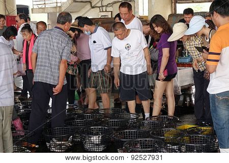 Inspecting Seafood At The Fish Market