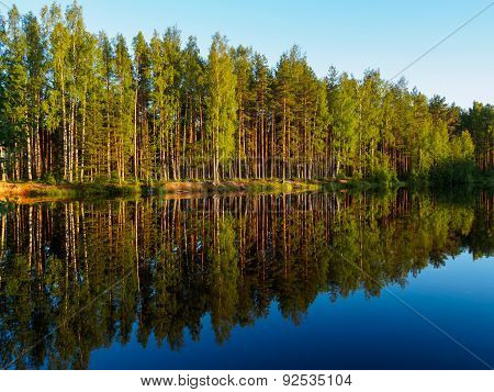 Summer Evening At Forest Lake In Sunbeam With Reflection In Water. Beautiful Water Landscape.