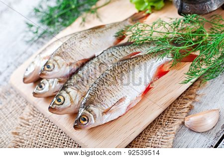 Prepared for frying fish roach on the wooden background. Top view