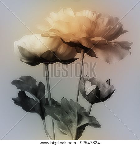 art vintage watercolor blurred floral pattern with golden peonies isolated on grey blue background with space for text