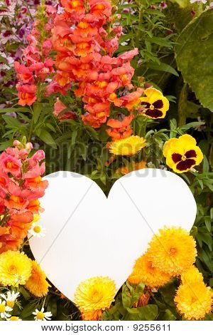 Flower Greetings From Heart