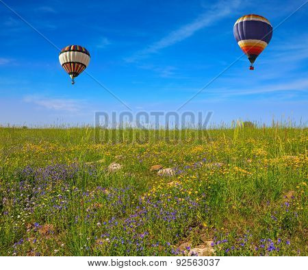 Flowering Golan Heights on a sunny day. In a clear sky flying two huge and beautiful balloons