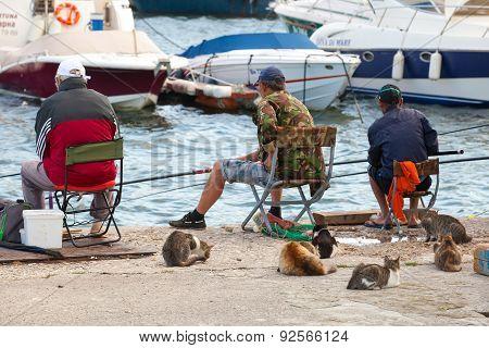 Senior Fishermen Catch Fish From The Shore