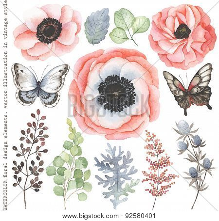 Collection of watercolor floral branches, flowers and butterflies in vintage style.