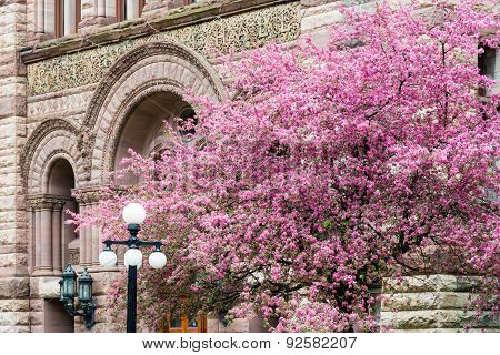 Old City Hall Romanesque Revival Architecture in Spring