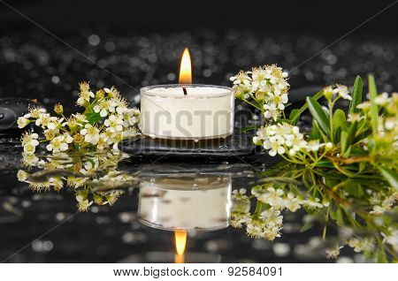 tropical spring flower with candle on therapy stones