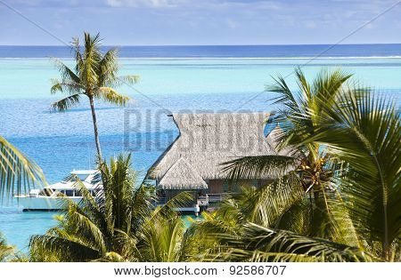 Blue lagoon of the island of Bora Bora Polynesia. A view from height on palm trees traditional lodge