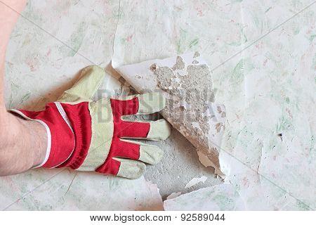 Repair In The Apartment. Removal Wallpaper